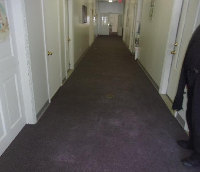 Lake Grove Carpet Cleaning After Storm Damage Before