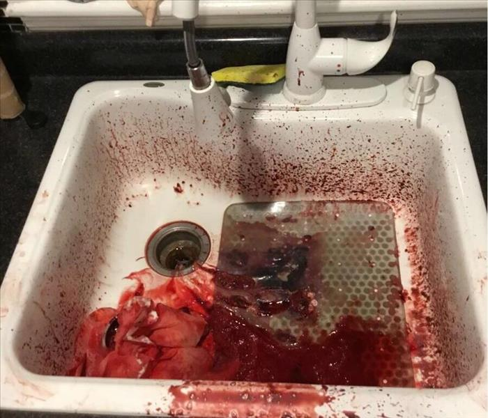blood and debris in a white sink, blood splatters