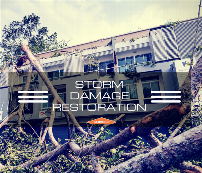 Storm Damage Staying safe during Summer Storms