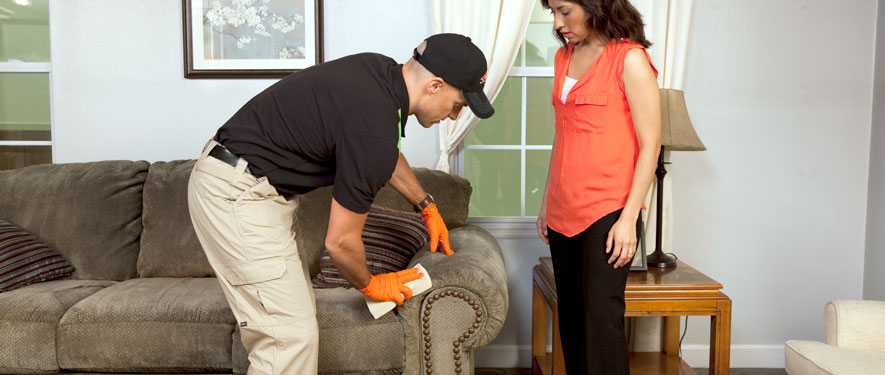 Port Jefferson, NY carpet upholstery cleaning